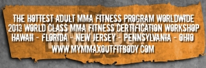 MMA Fitness Business