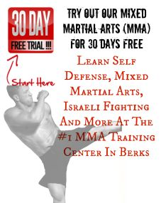 30 day free mma training