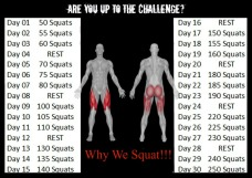 Berks County Squat Challenge